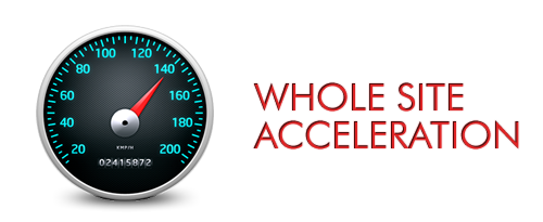 whole site acceleration